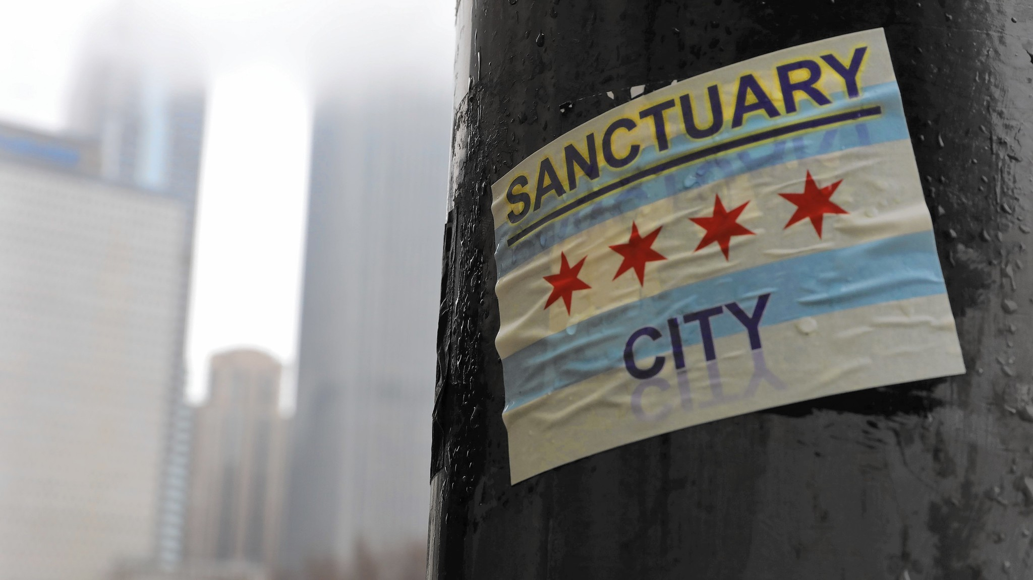 Photo of a sticker of the Chicago flag that says Sanctuary City